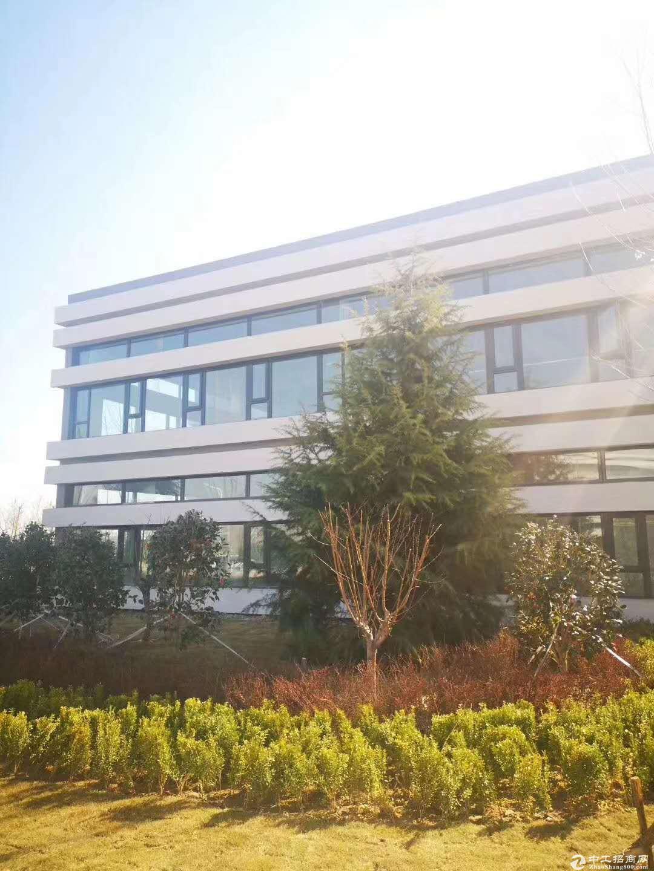 联东U谷武进标准化50年产权独栋厂房出售-图3