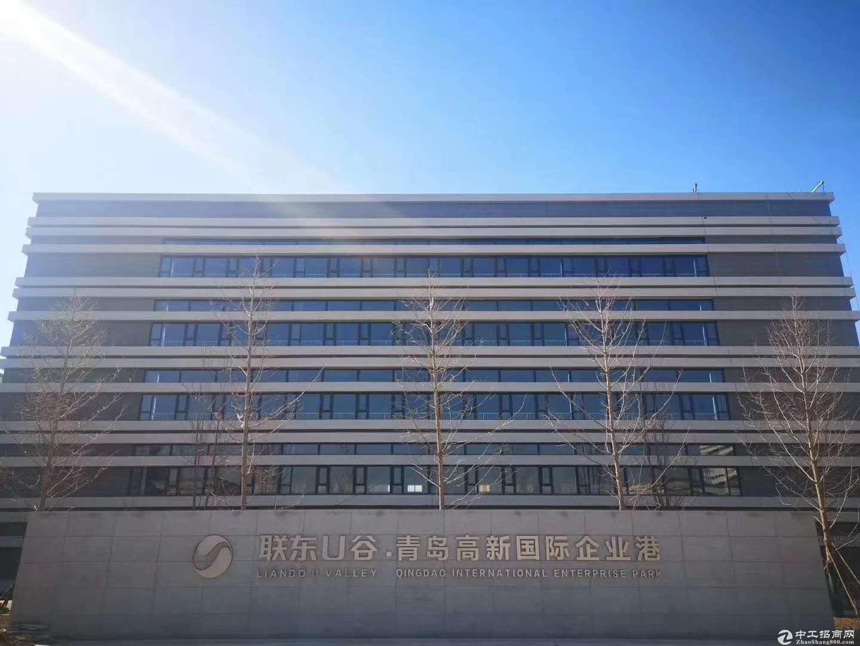 常州联东U谷,50年产权核心地段标准化厂房出售-图2