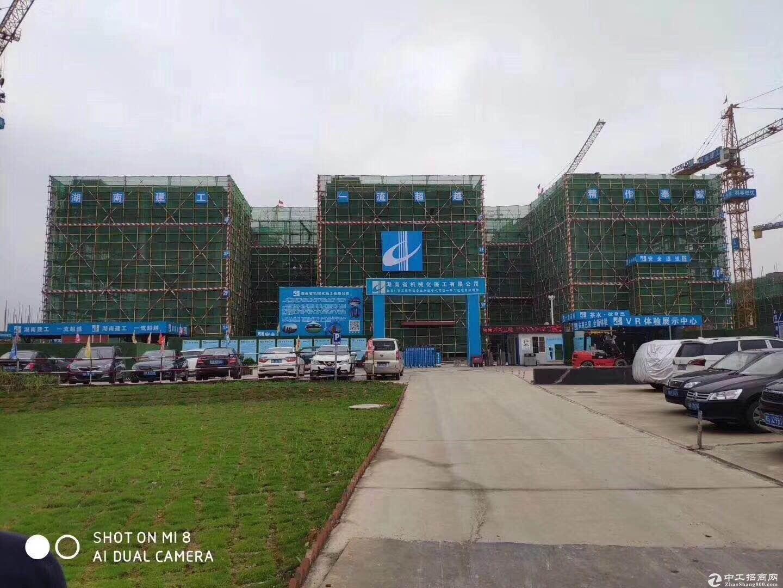 标准厂房 实用性强 柱间距8米方便隔开办公