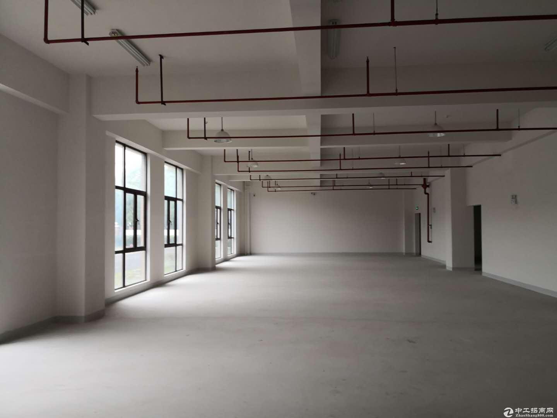 宣桥镇三灶工业园区二楼仓库1400平米0.9元-图3