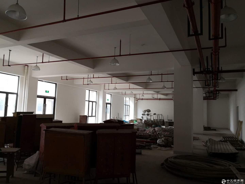 宣桥镇三灶工业园区二楼仓库1400平米0.9元-图4