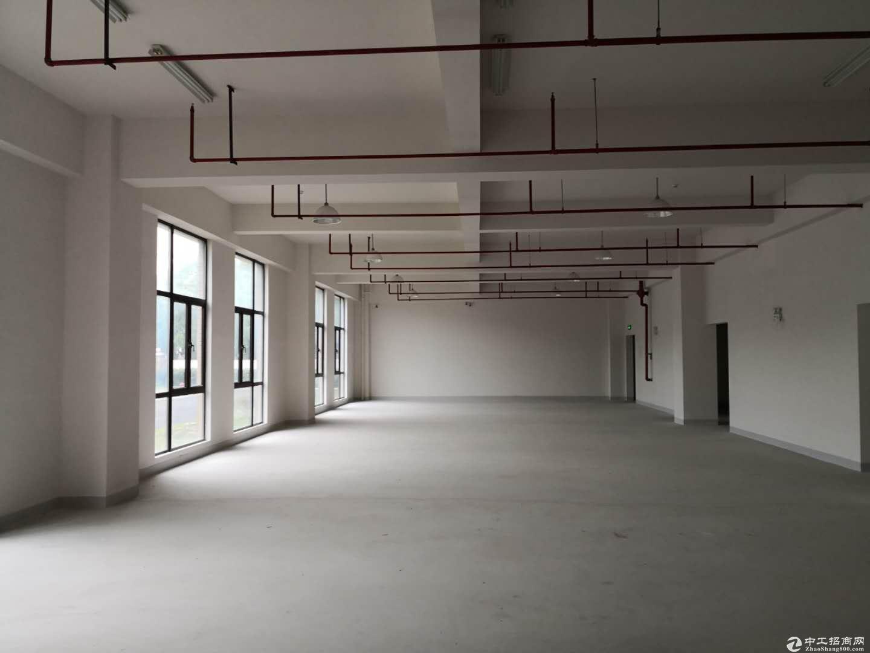 宣桥镇三灶工业园区二楼仓库1400平米0.9元-图5