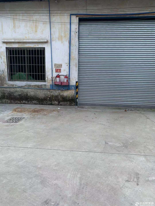 新会区睦洲镇单一层厂房400方出租 空地大适合仓库小加工行业图片1