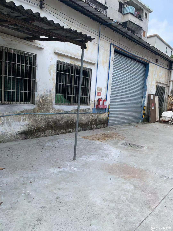 新会区睦洲镇单一层厂房400方出租 空地大适合仓库小加工行业图片2