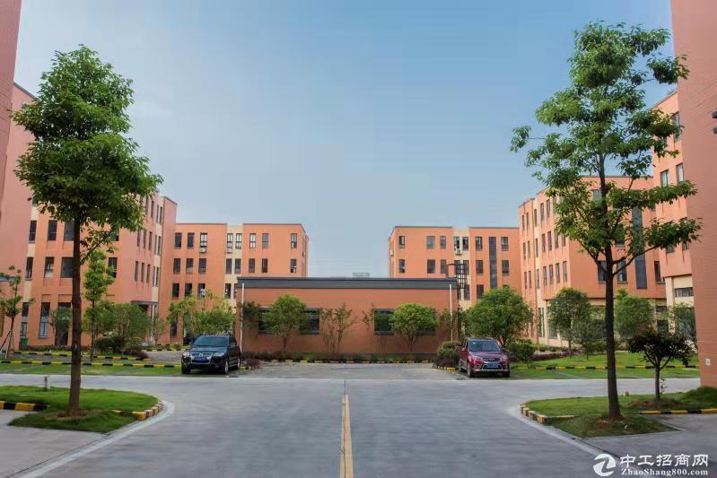 开发商直售,3-4层独栋框架结构厂房,50年产权