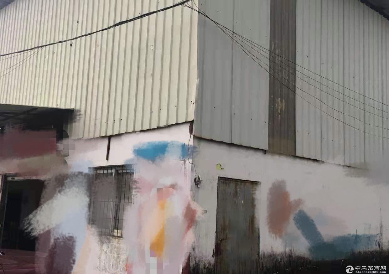 江海区礼东工业区单一层厂房800方出租 价格实在电100
