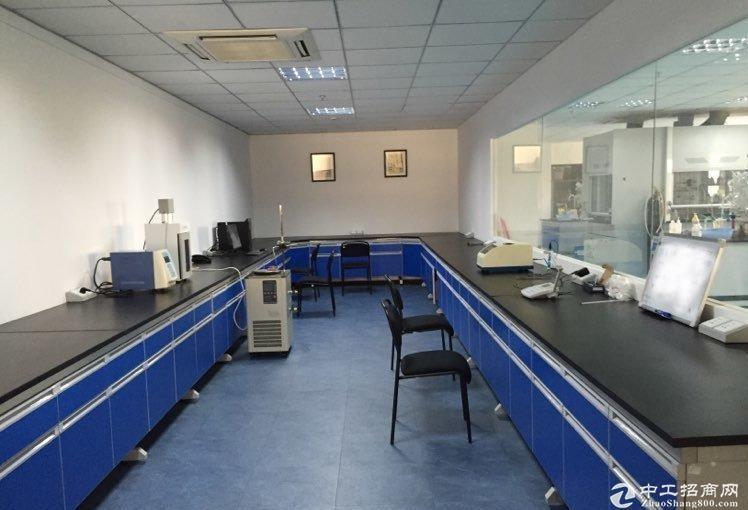 浦江8号线联航路站1000平实验室加办公室独立整层精装修厂房
