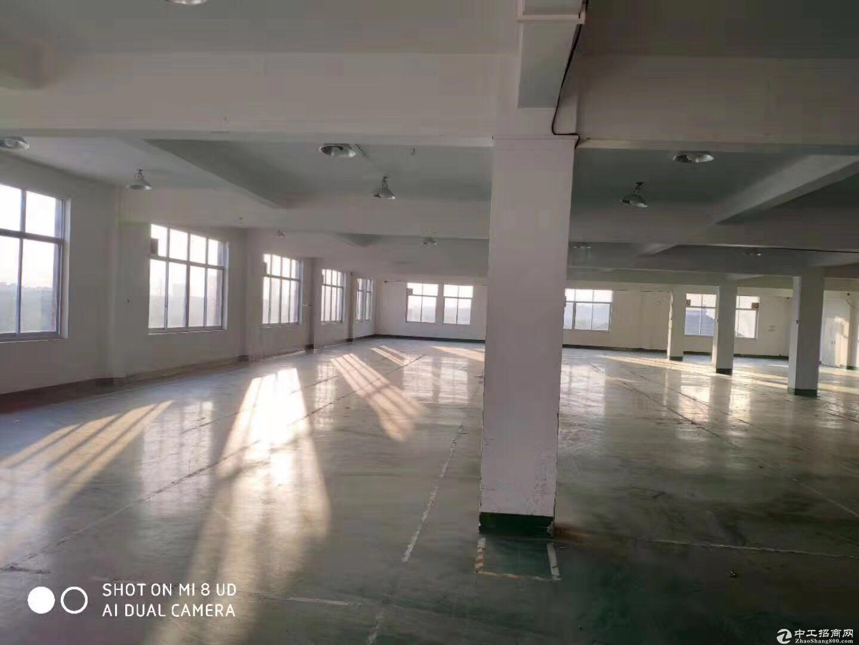 淘宝仓库看过来,单层两千方,大小面积可随意分割-图2