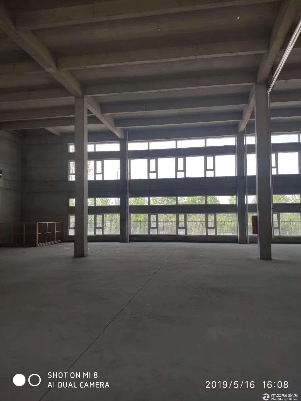 新建标准独栋厂房,层高7.2米,大产权手续齐,可贷款