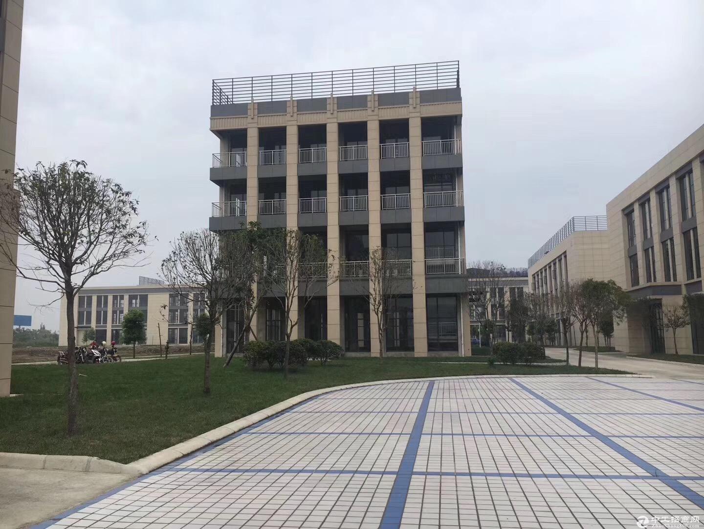 四川国际生物医药产业园独栋厂房出租