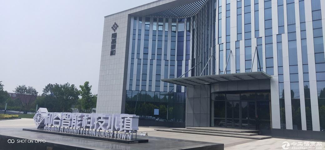 京雄枢纽和谷产业园独栋厂房出租无产业限制可环评