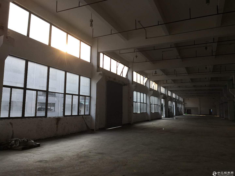 浦东一层仓储1000平起租,层高7.5,带8亩空地,仓储物流