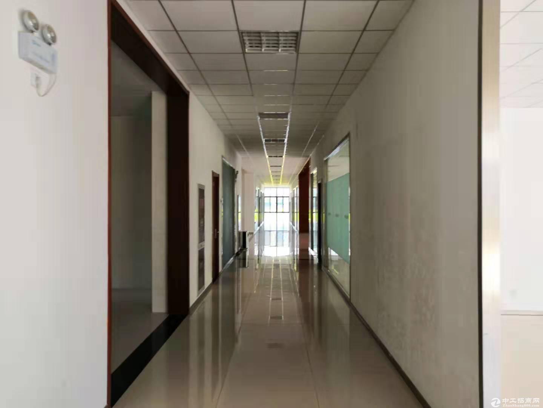 南京周边独门独院产业园厂区整体出售-图4