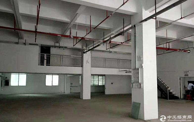 金鲤工业区整层900平米现成装修厂房实拍图