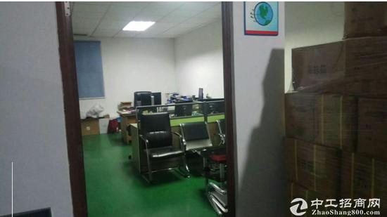 茶山800平带办公室厂房 免中介房东直租