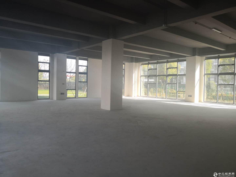 【启迪漕河泾科技园】独栋研发楼可分层出售-图4