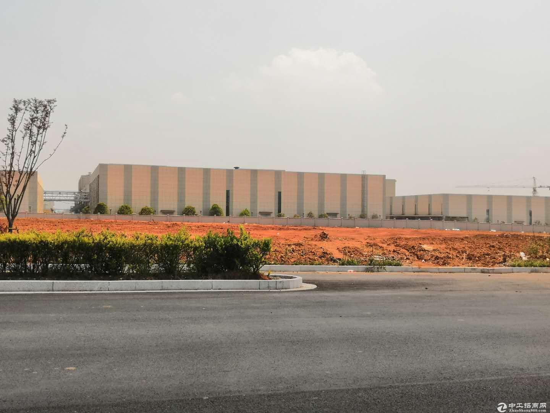 产权50年 全新标准独栋、双拼工业厂房 毗邻高铁站