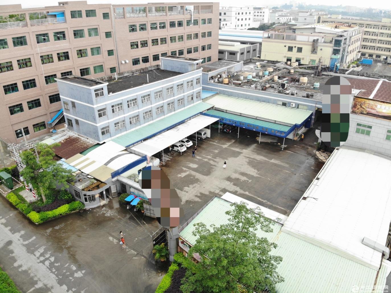 东莞塘厦出售厂房6000平方红本双证