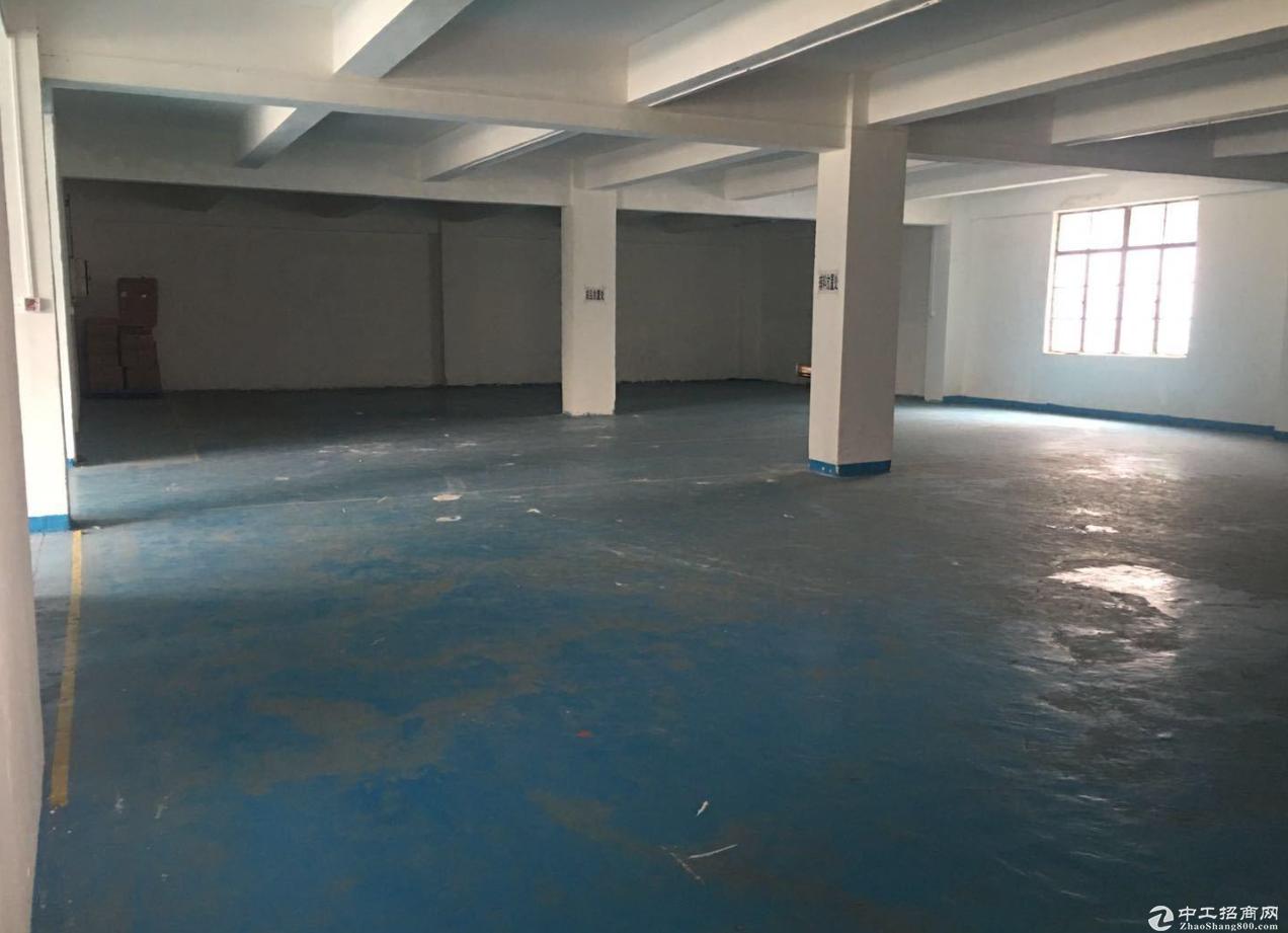 西区市场业主直租黄金地段办公室、仓库、厂房400方