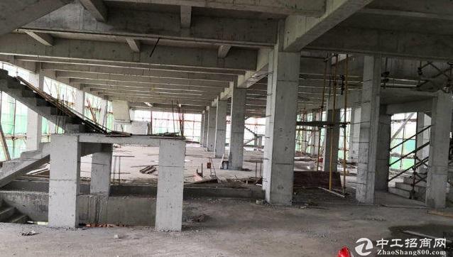 4层独栋双拼厂房 5层分层厂房 随时可以看