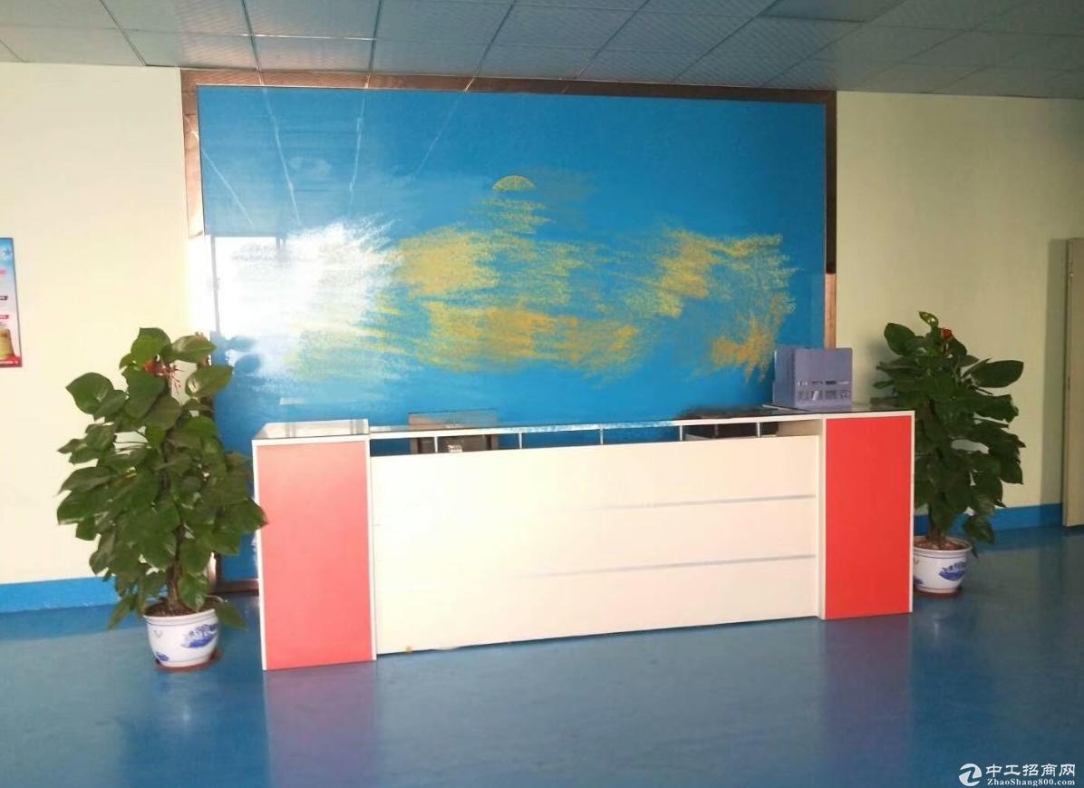 沙港西路原房东一楼带装修780方厂房出租,可分租