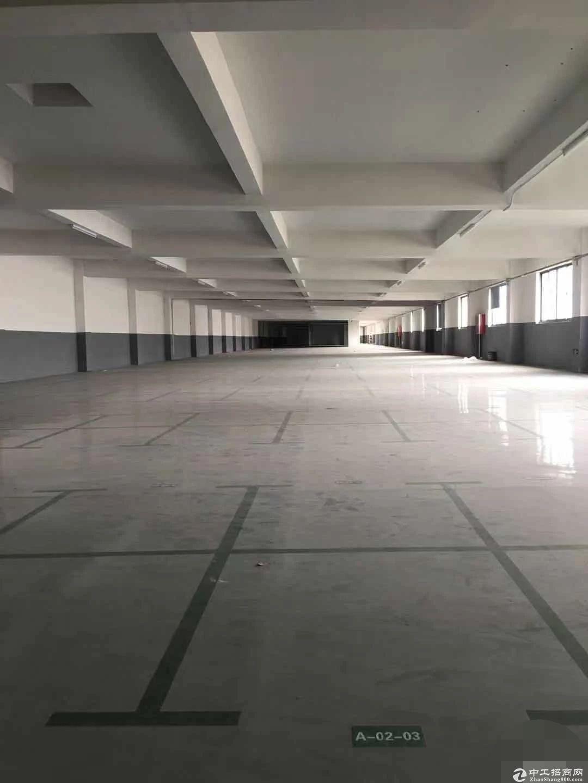 张泾二楼2700平环氧地坪,独门独院二楼3600平