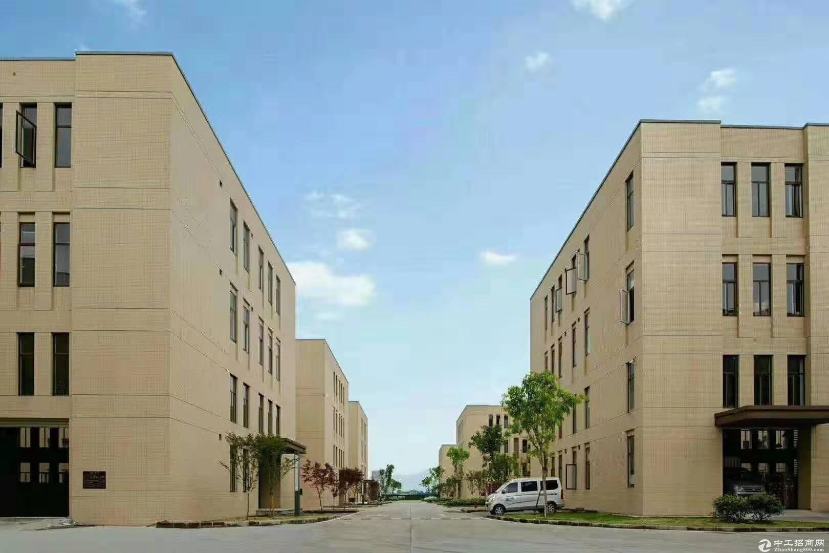 九龙坡独栋标准厂房空高11米送庭院-图3