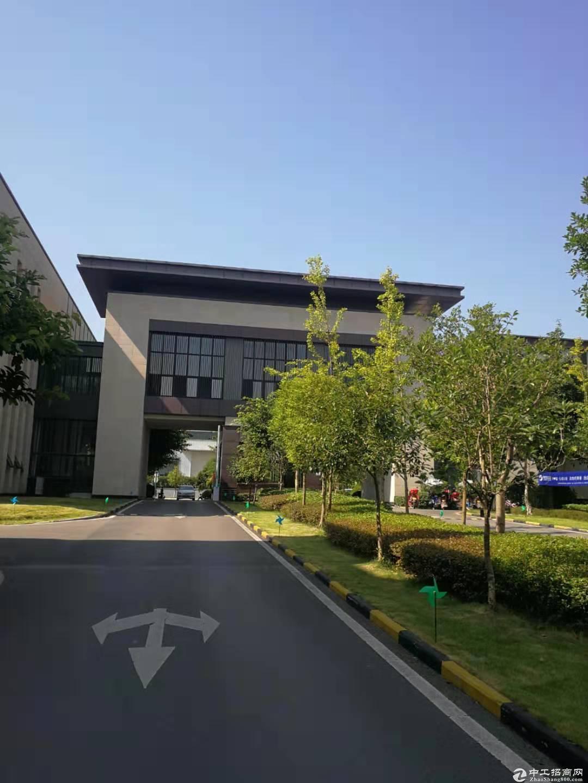 九龙坡工业园标准厂房送庭院-图3