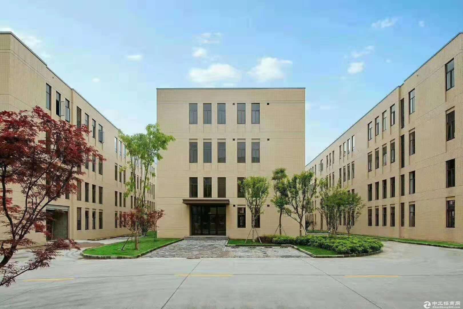 九龙坡C区标准厂房1200~4000出租-图2