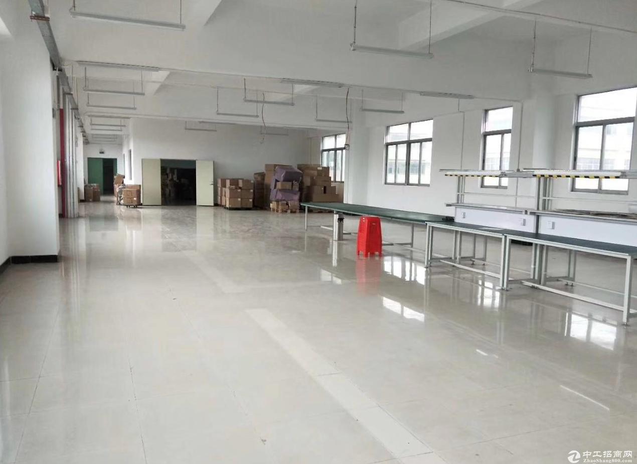 港口沙港公路300平精装修办公厂房仓库出租 非常适合电商