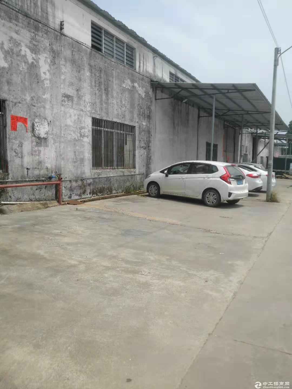 蓬江区棠下镇单一层厂房1950方出租 价格实在适合仓库行业