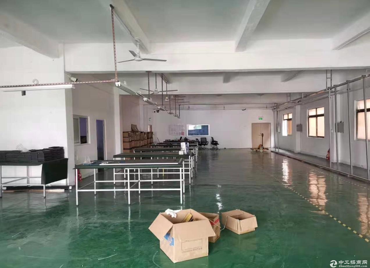 阜沙新出楼上1000平方 精装修厂房 原房东 面积实在