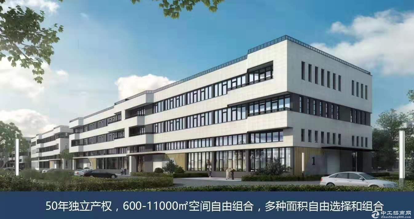 大湾区核心,台山工业新城50年独立产权厂房
