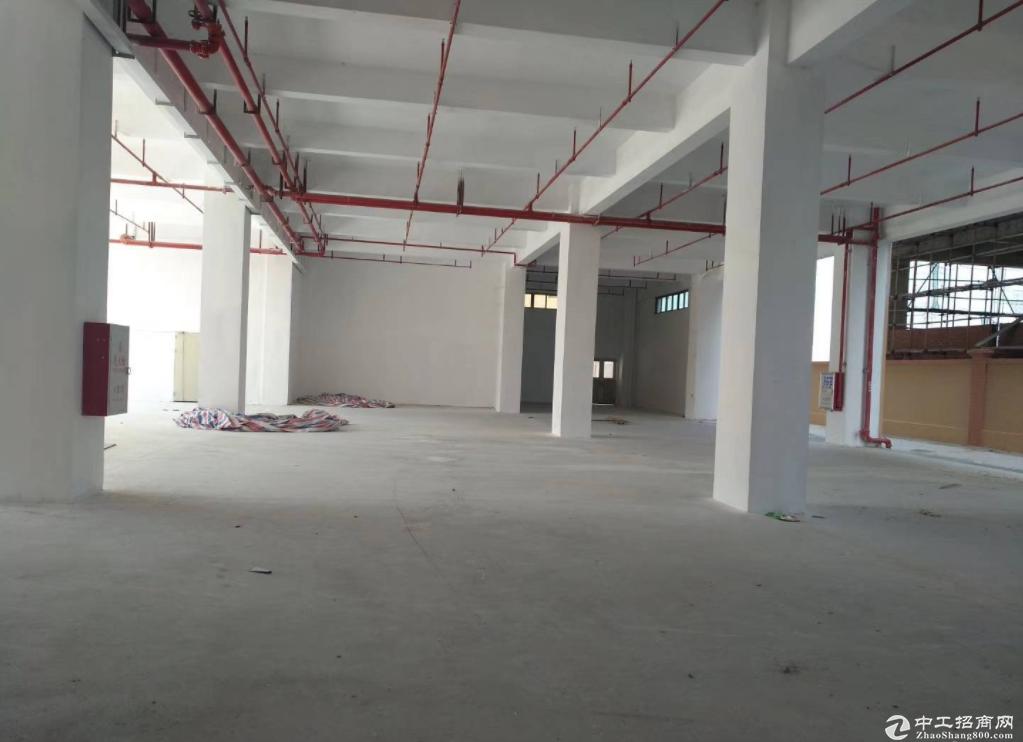 沙港东路新出楼上300平厂房仓库出租 形象好