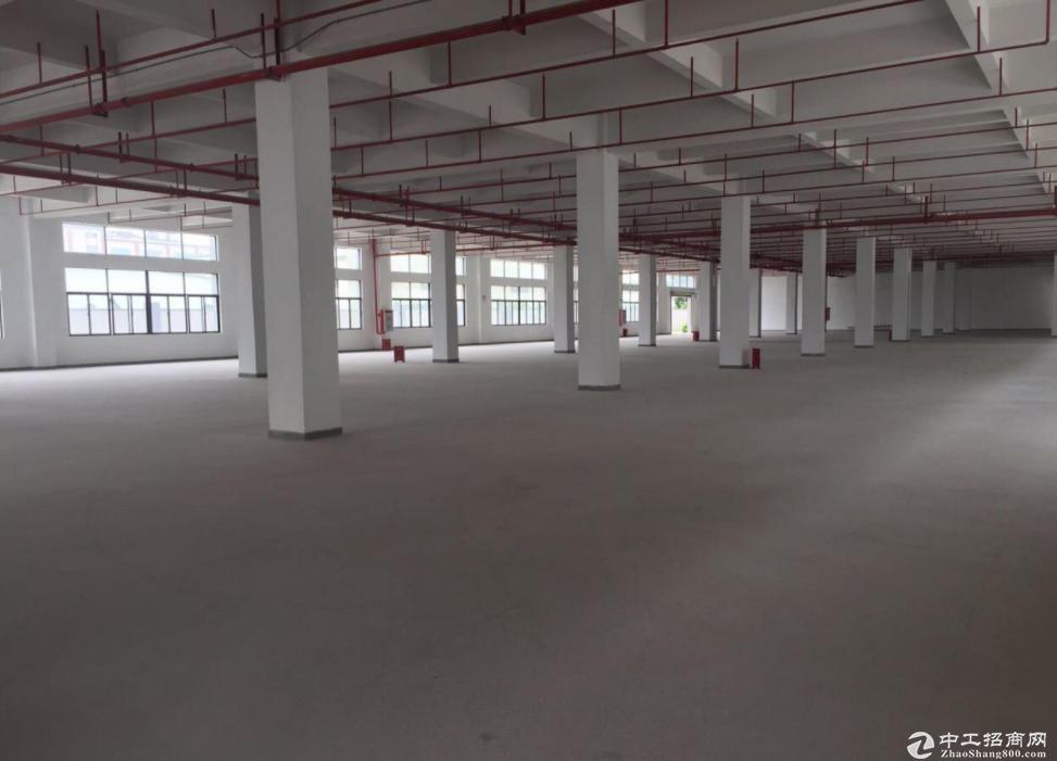 三角工业区标准厂房3000平,大小可分租