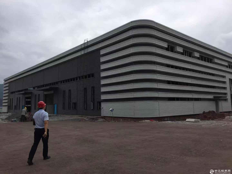 全新厂房  1250至6500平方米可分割-图2