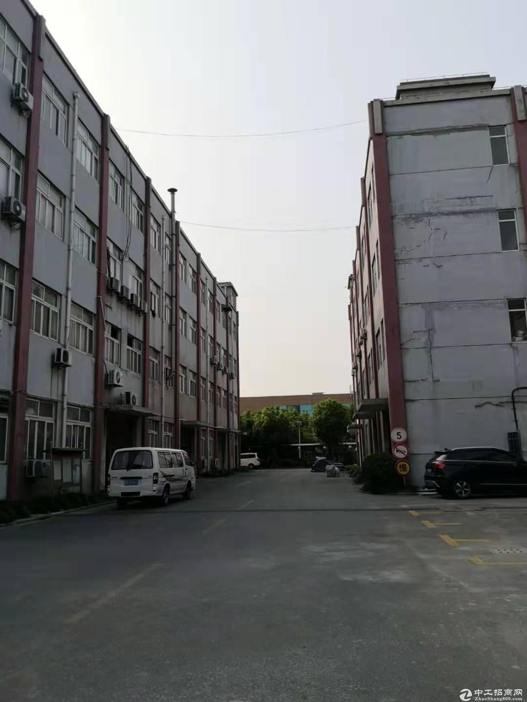 宝山罗店标准厂房/104厂房/可注册公司办理环评