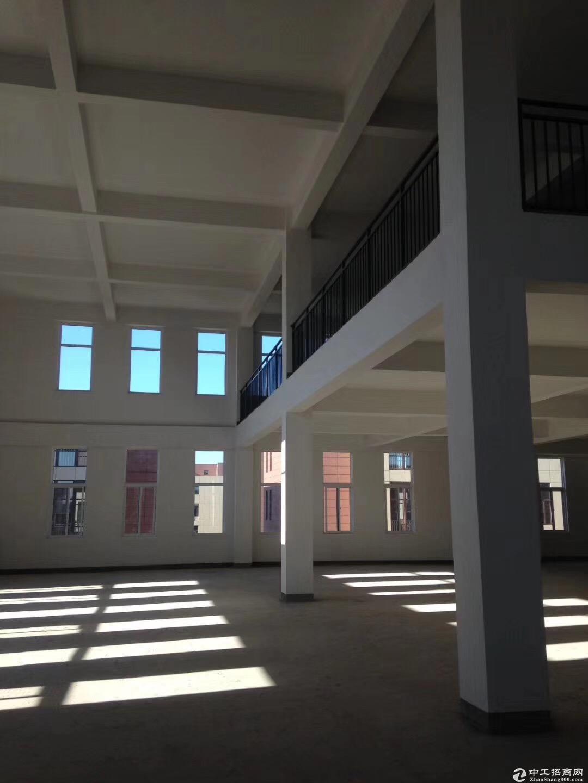 高新区全新独栋厂房1600㎡层高7.2米可环评-图2