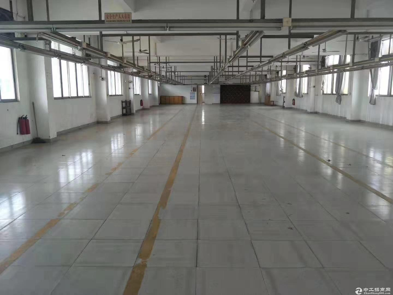 江海高新区独栋厂房4000方出租 形象好配套宿舍可分租