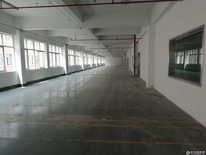 康桥大房东整层1200平可分割出租,100平起租可办环评仓库厂房