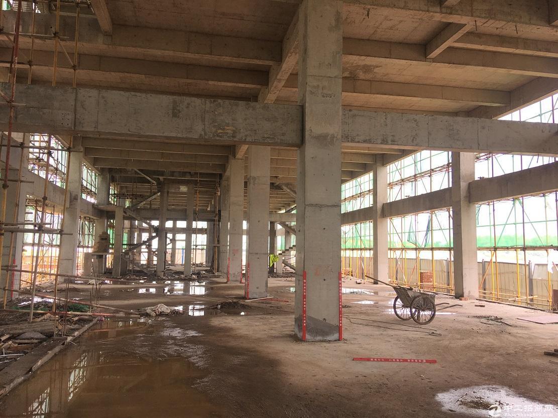高新区厂房出售 4层独栋双拼 5层分层 4600元一平期