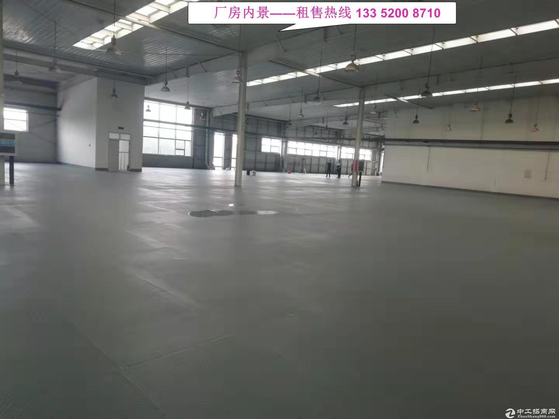【8000平丙二类高台库】企业仓储、电商物流、快运快递之选!-图5
