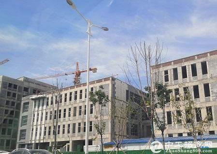 临综保区政府建标准厂房可环评准现房企业集聚可分割-图2