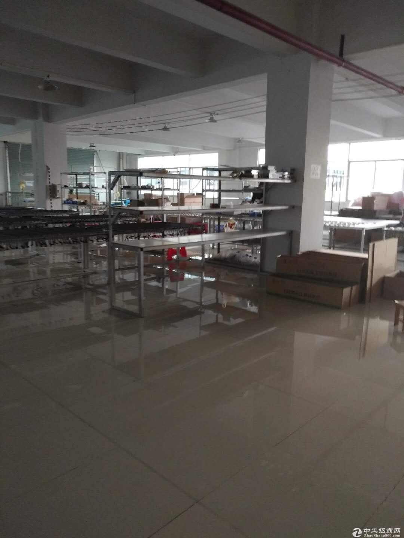 高新工业区标准厂房精装修楼上800方出租 形象靓现成办公室