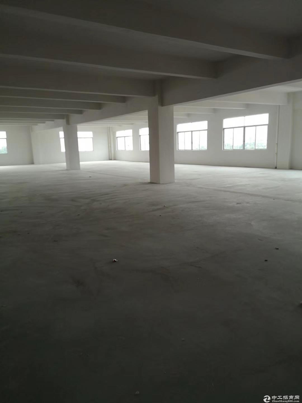 高新工业区全新标准厂房5500方出租 带装修独立卫生间可分租