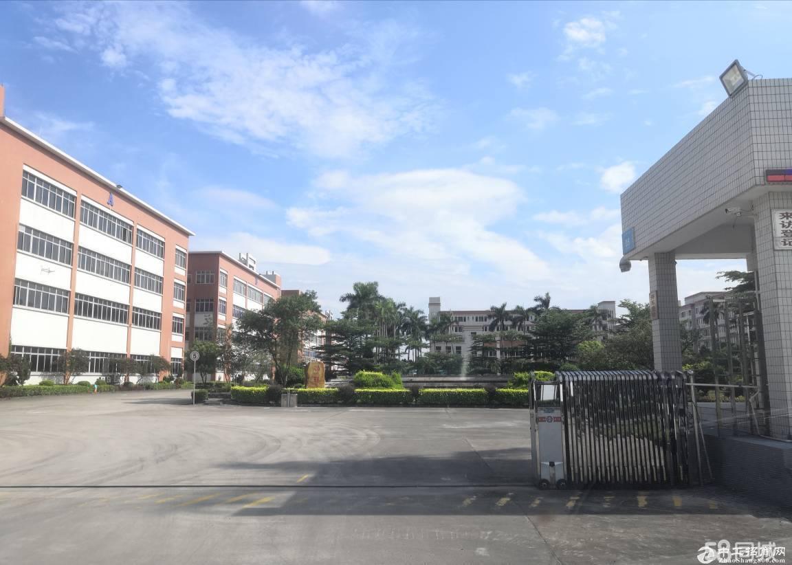 中山火炬开发区高新产业园厂房8000方 配套齐全