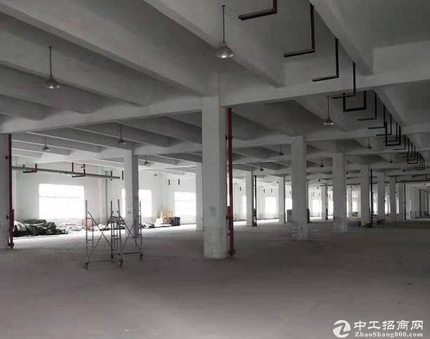 千灯全新厂房招租 带宿舍楼