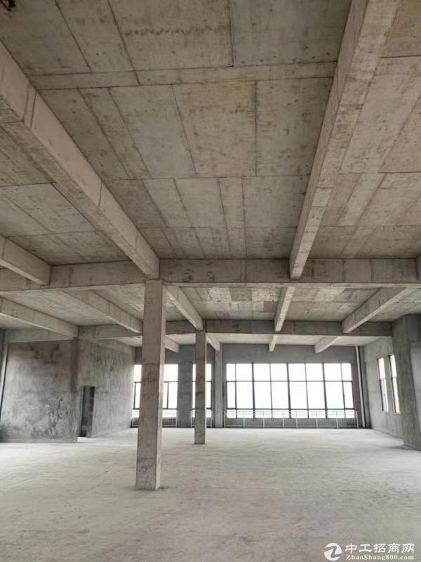 房东直售优质厂房 临近国道 高速口