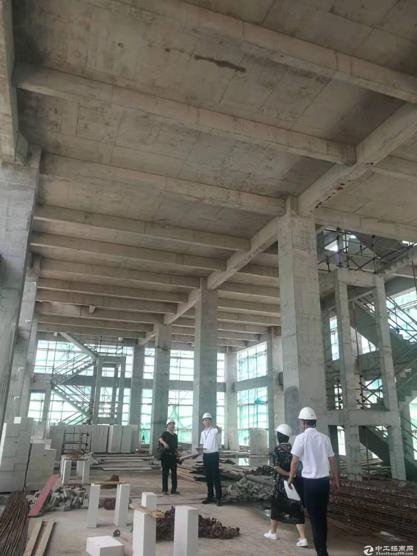 南京标准工业厂房,国家示范产业园区,50年产权,低首付-图3