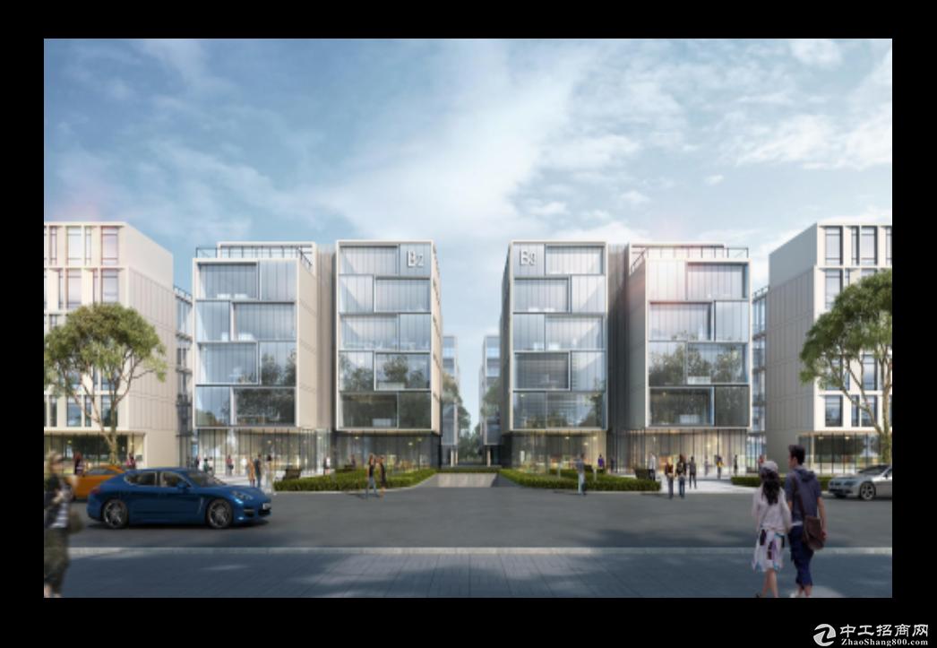 全新标准园区厂房,独栋,政策返税,环境优美-图3